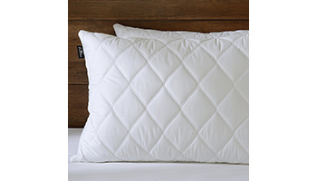 best feather pillows downluxe set of 2